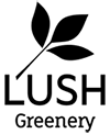 LUSH Greenery : Artificial Plants